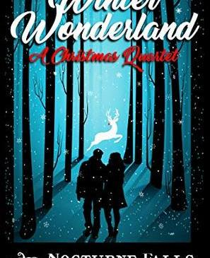 Cover for Winter Wonderland by Fiona Roarke, Kira Nyte, Larissa Emerald, and Candace Colt